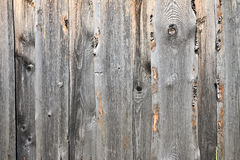 Texture wood Stock Images