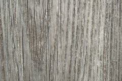 Texture of wood, old board Royalty Free Stock Image