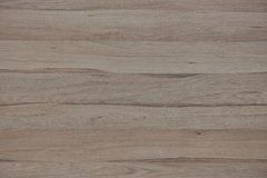 Texture wood panel Royalty Free Stock Images