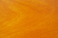 Texture of wood pattern background Stock Image