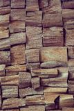 Texture of the wood is photographed Stock Photography