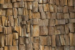 Texture of the wood is photographed Stock Images