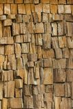 Texture of the wood is photographed Royalty Free Stock Images