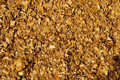TEXTURE WOOD POWDER FOND Royalty Free Stock Photos