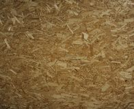 The texture of wood shavings Stock Image