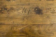 Texture wood tree brown grain pattern stock photos