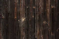 Texture of wood wall Stock Image