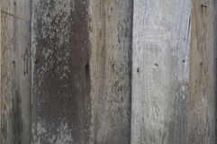 Texture wood wooden detail background floor ground concept Royalty Free Stock Photography