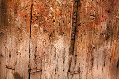 texture wooden Стоковая Фотография