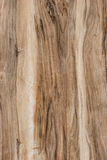 Texture of wooden board. With a beautiful pattern Royalty Free Stock Images