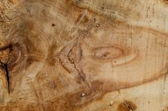 The texture of the wooden board, with a clear cut pattern royalty free stock images
