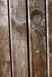Texture of wooden door Royalty Free Stock Image