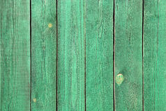 Texture of wooden green fence Stock Image