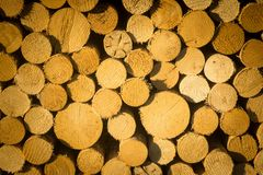Texture of wooden logs for designs, pattern for backgrounds. Horizontal graphic resource royalty free stock image