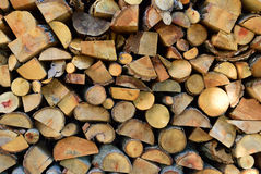 Texture of wooden logs Stock Image