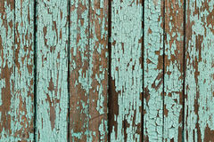 Texture of  wooden panel for background Stock Images