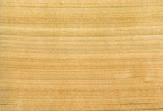 Texture of wooden plate Stock Photo
