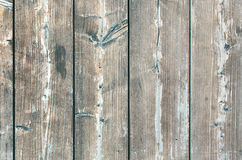 Texture wooden table with knots. Vertical texture wooden table with knots Royalty Free Stock Image