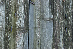 Texture of wooden walls. Stock Photos