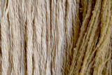 Texture of wool Royalty Free Stock Photography