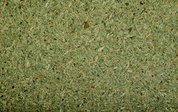 Texture of the yellow-green of the small elements. Royalty Free Stock Photo