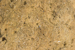 Texture yellow plastered cliff texture for background. Royalty Free Stock Photos