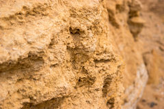 Texture of yellow rock. Light colored stone. Nature builds might. Material for geological studies Royalty Free Stock Photo
