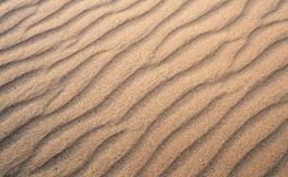 Texture of yellow sand, background Stock Images