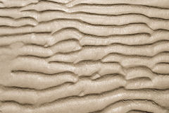 Texture of yellow sand Stock Photo