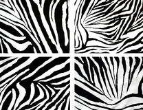 Texture of zebra cloth Royalty Free Stock Photos
