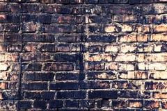 Textured ściana z cegieł Zdjęcie Stock