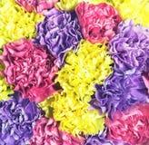 Textured abstrakcjonistyczny tło od bukieta kwiatu zbliżenie Obraz Stock