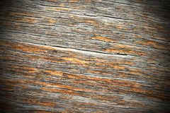 Textured ancient oak wood Royalty Free Stock Photo