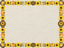 Textured background with autumnal frame of sunflowers and pumpki Stock Photo