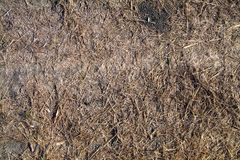 Textured background from the background of dry grass and soil. Autunm season Royalty Free Stock Photos