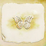 Textured background -butterfly. Textured background with illustration butterfly Royalty Free Stock Photo