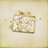 Textured background  with illustration. Paper butterfly , box Stock Photos
