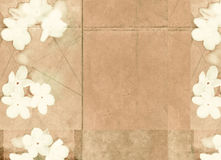 Textured background image with flora. Lovely background image with interesting earthy texture and floral elements. useful design element Stock Photo