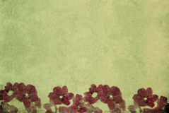 Textured background image with floral elements Stock Images