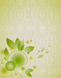 Textured background with leaf Royalty Free Stock Image