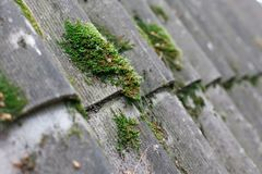 Textured background of old asbestos roof sheets. Texture of gray fiber asbestos roof sheets with green moss, closeup. Pattern of weathered old roof, rustic Stock Photography
