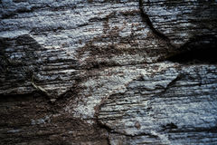 Textured background of old wooden wall Royalty Free Stock Images