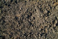 Textured background of plowed land. Earth texture Royalty Free Stock Photos