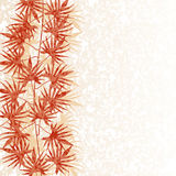 Textured background for text with a picture of the stalk and leaves of creepers. Textured background for text with a picture of the stem and the red autumn Royalty Free Stock Photography