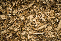 Textured Background of Wood Chips Stock Images