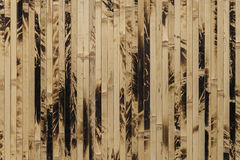 Textured bamboo wallpaper close-up, nature background Stock Image