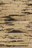 Textured bamboo wallpaper close-up, nature background Royalty Free Stock Photography