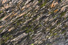 Textured basalt background thin stone fibers in the cut. natural volcanic formations.  stock photo