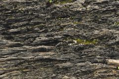Textured basalt background thin stone fibers in the cut. natural volcanic formations.  stock photography