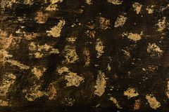 Textured black and gold background royalty free stock image